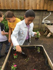 garden-group